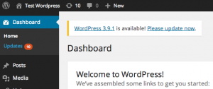 Automatic WordPress Core, Plugin and Theme Updates